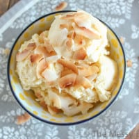 Pineapple Coconut Ice Cream-3162