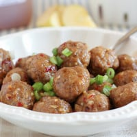Apple Glazed Meatballs {www.themessybakerblog.com}-4647