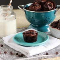 Nutella Swirl Pumpkin Chocolate Muffins {www.themessybakerblog.com}-4807
