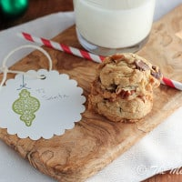 Chocolate Chip Cookies {www.themessybakerblog.com}-5730
