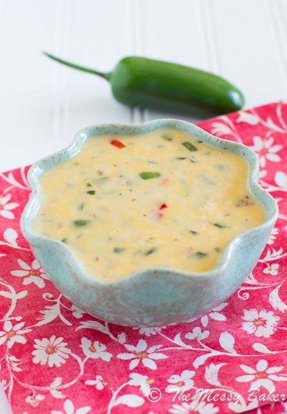 Spicy Queso Blanco | www.themessybakerblog.com -7080
