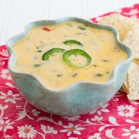 Spicy Queso Blanco | www.themessybakerblog.com -7083