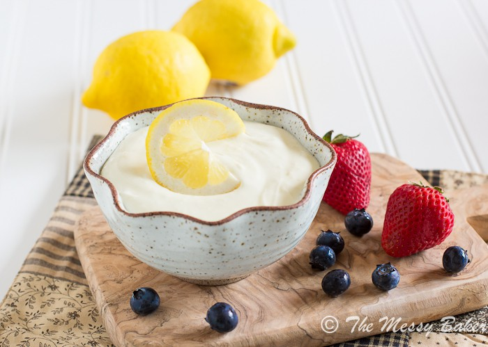 Gluten-Free Lemonade Dip | www.themessybakerblog.com -7420