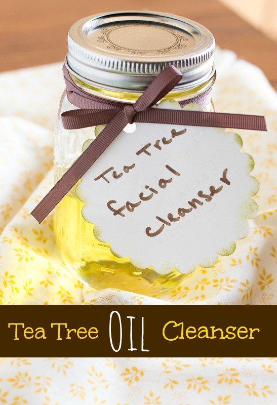 Homemade Tea Tree Oil Facial Cleanser  www.themessybakerblog.com