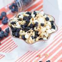 Blueberries & Cream Granola | www.themessybakerblog.com-8018