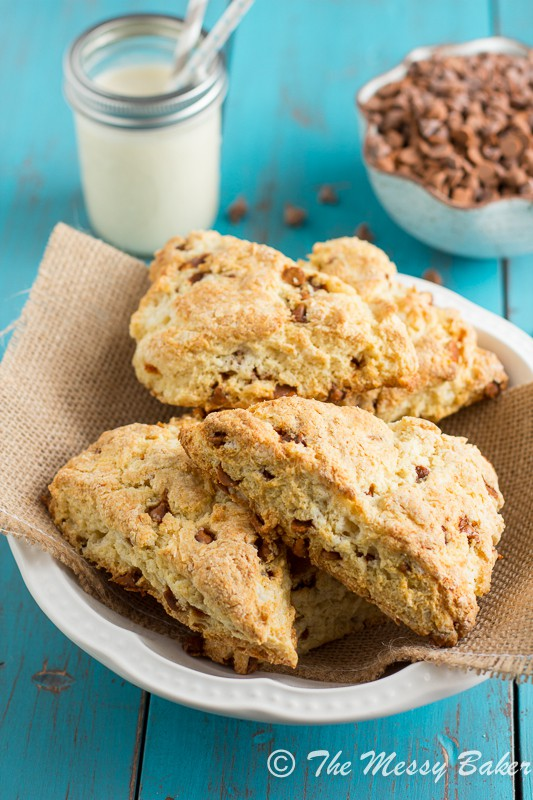 Eggnog Cinnamon Chip Scones ~ A Scone Tutorial - One Sweet Mess